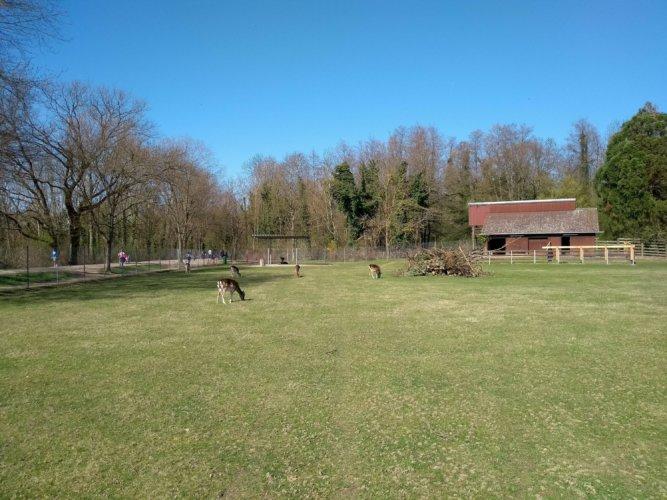 Mundenhof - Begehbares Gehege
