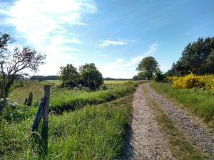 Bauernhofurlaub - Beim Ferienhof Hafflandsichten