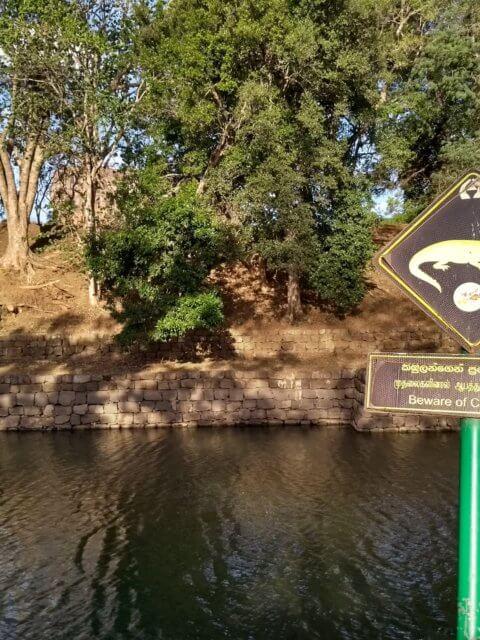 Vorsicht Krokodile Sigiriya