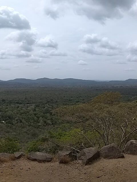 Sicht mittlere Ebene Pidurangala bei Sigiriya
