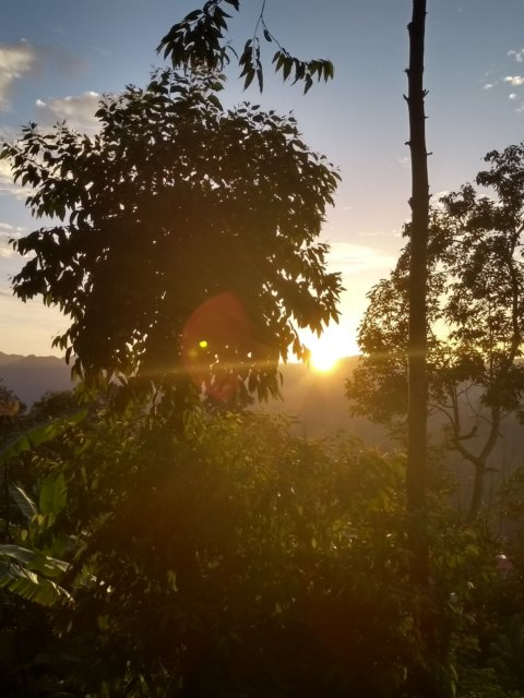 Sonnenaufgang im Sun View Resort Ella