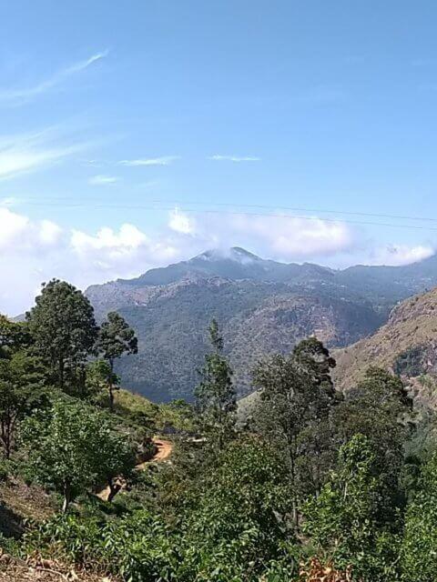 Weg zum Little Adams Peak mit Blick auf Ella Rock