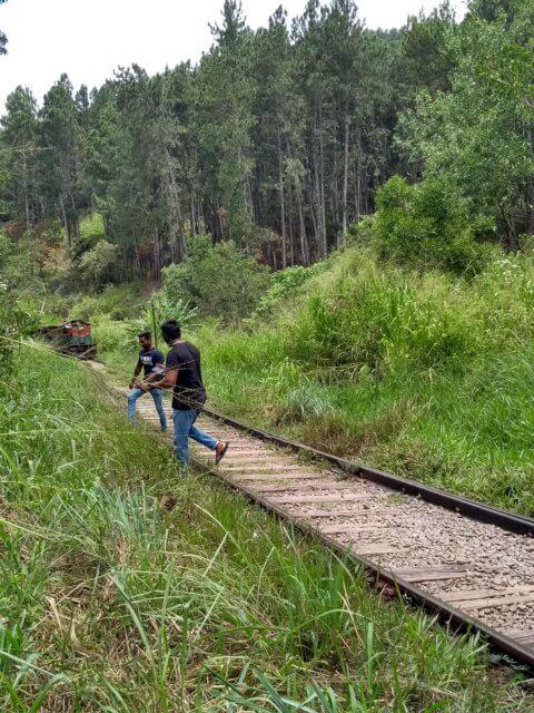 Ein Zug nach Ella