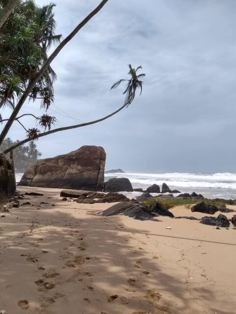 Dalawella Beach