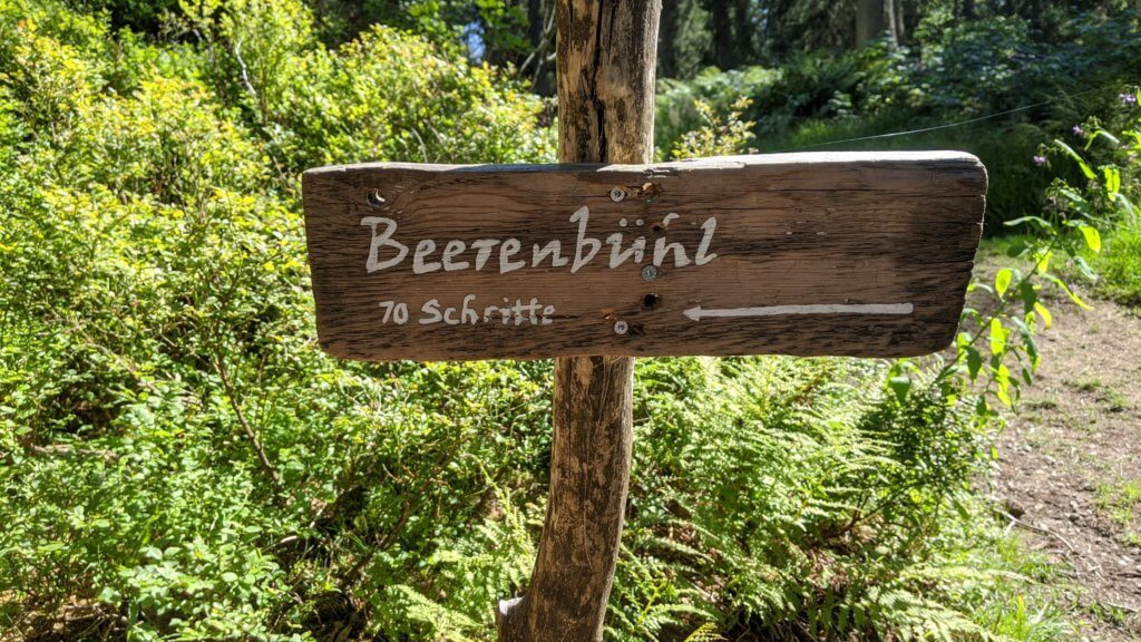 Wichtelpfad Feldberg Beerenbühl